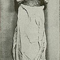 Pharaoh Ramses II of Egypt.