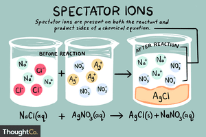 A spectator ion appears the same on both sides of a chemical reaction.