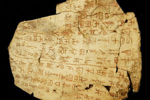Early Chinese script on a Shang oracle bone