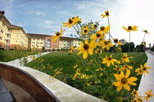 Residence Halls at the University of Michigan-Flint