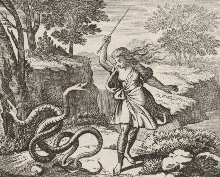 Illustration of Tiresias striking the snakes