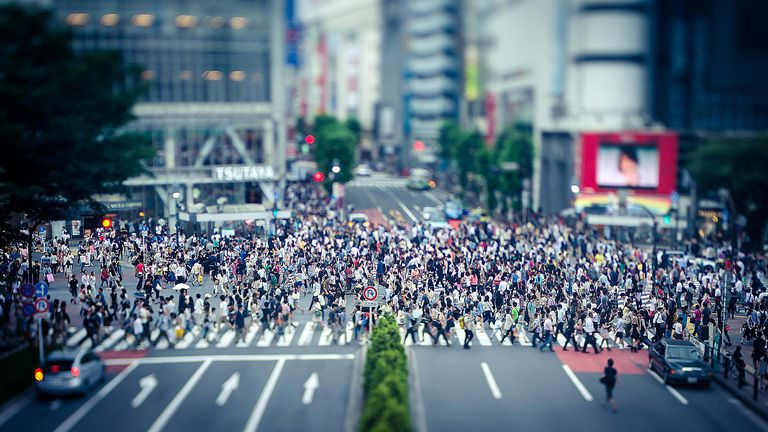 A crowded yet functioning city street demonstrates chaos theory.