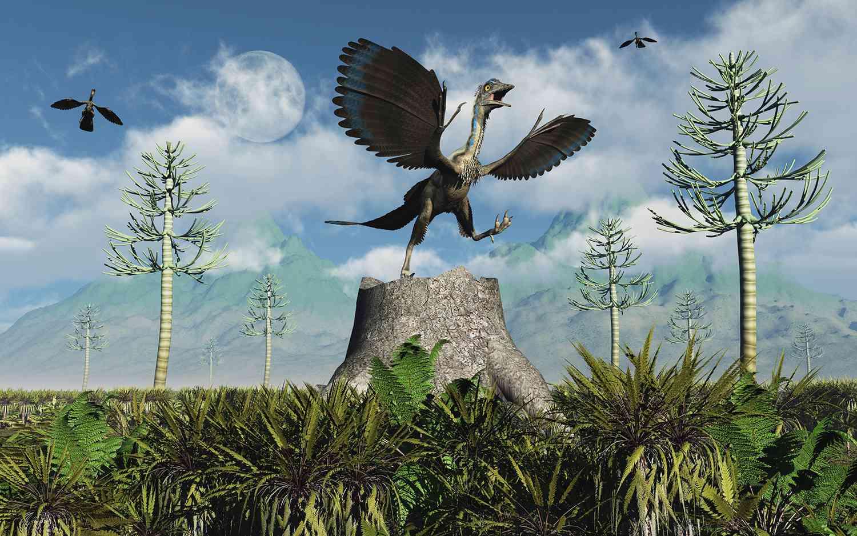 Un Archaeopteryx