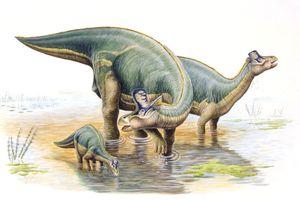 Illustration of Lambeosaurus family - stock illustration