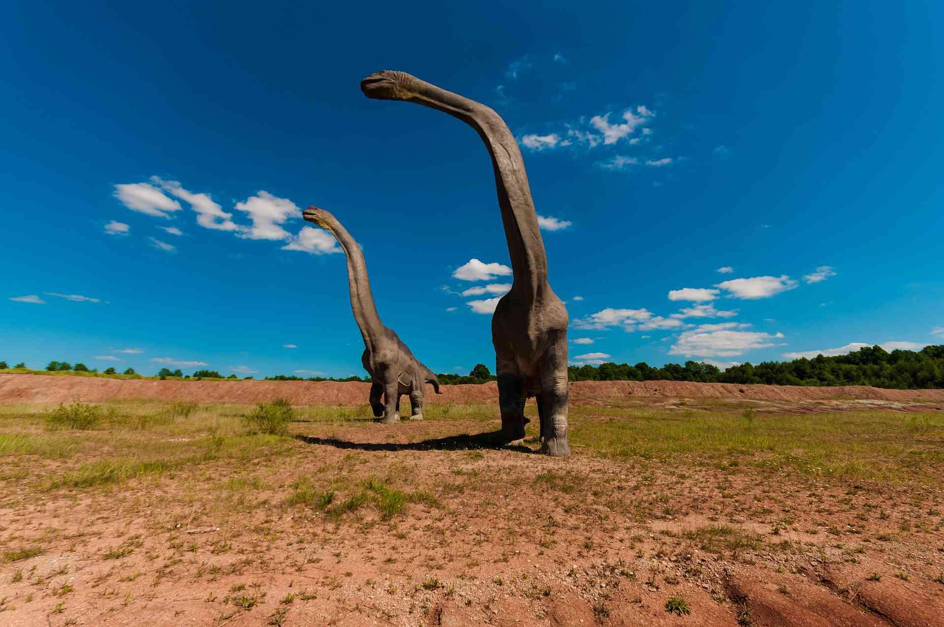 Artist rendering of dinosaurs against a vast landscape.