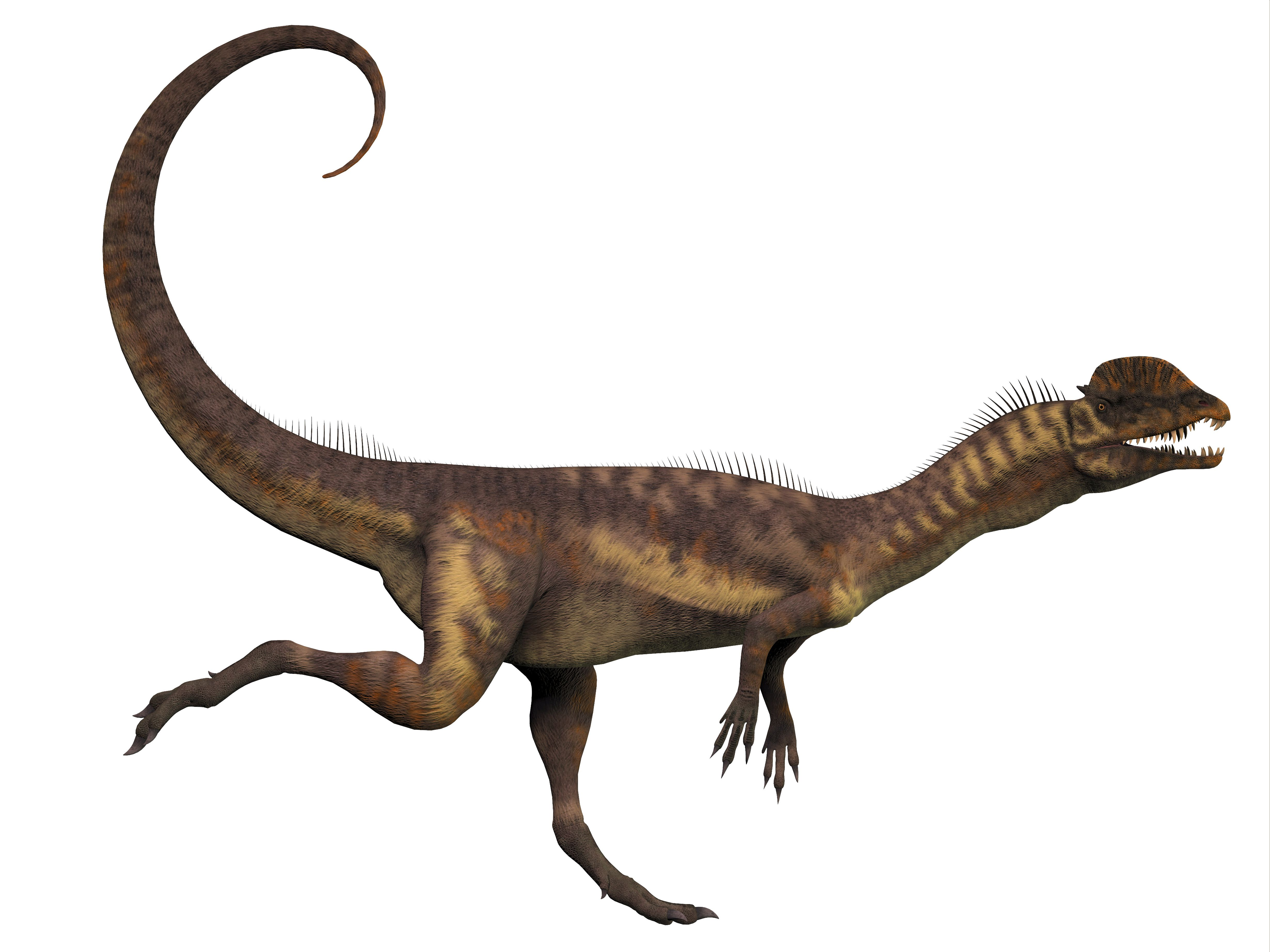graphic rendering of dilophosaurus