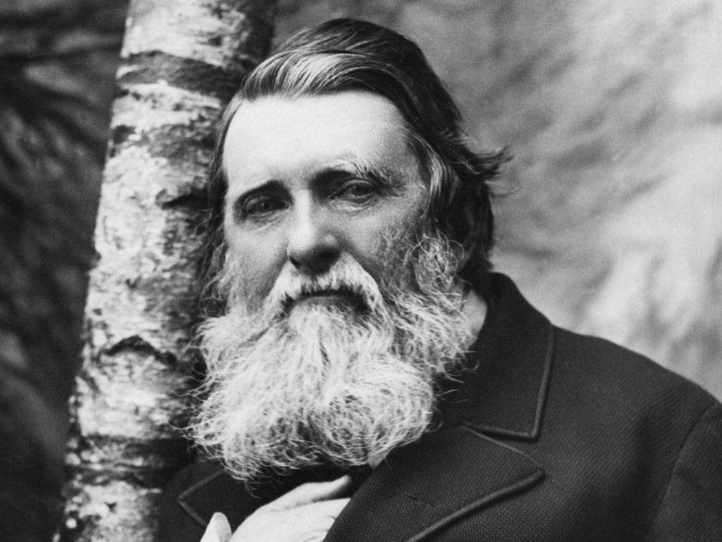 Black and white portrait of 19th century writer critic John Ruskin, wild bushy beard