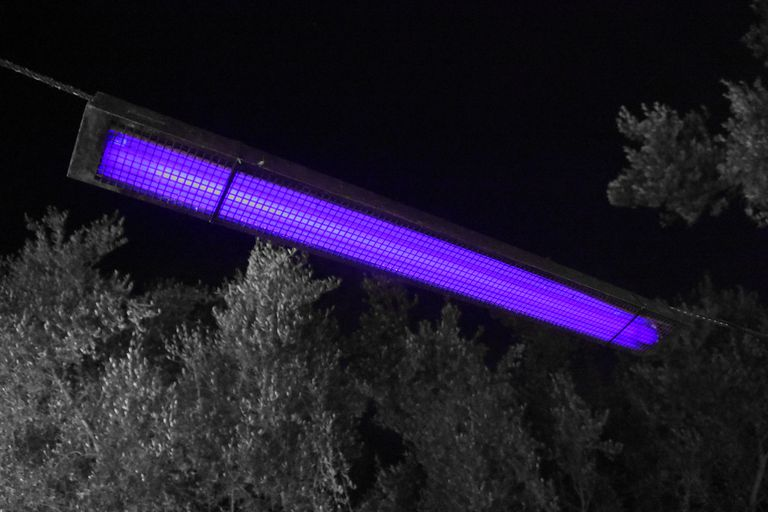 Ultraviolet light is invisible, but black lights or UV-lamps also emit some visible violet light.