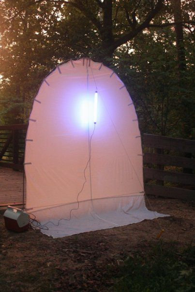 A commercial black light setup for collecting night-flying insects.