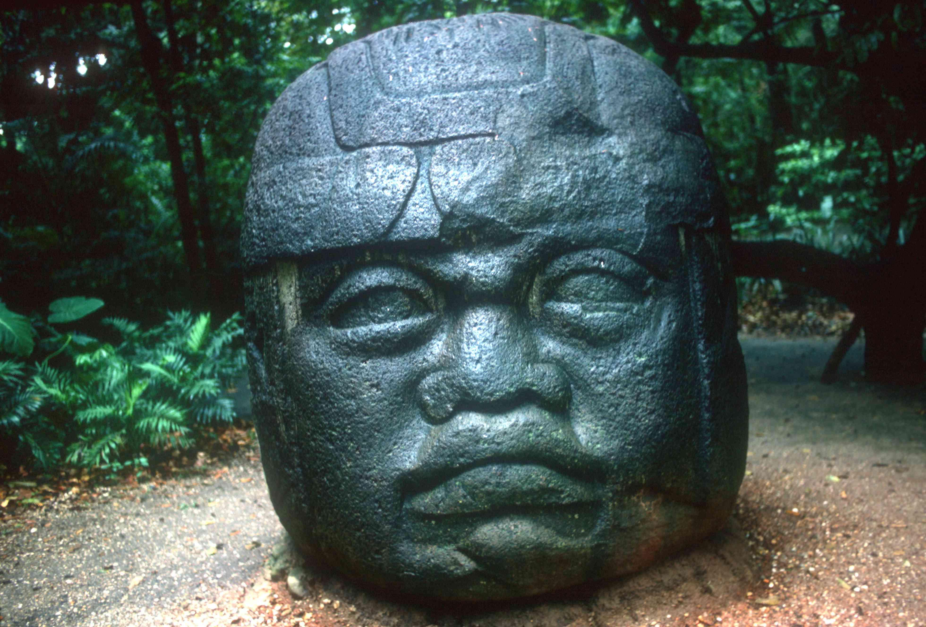 Olmec carved head from La Venta, Pre-Columbian, Central America