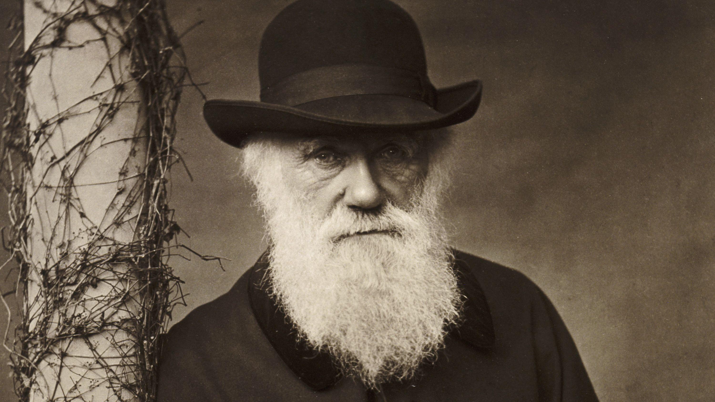 چارلز داروین ، شیطان یا نابغه (مستند)