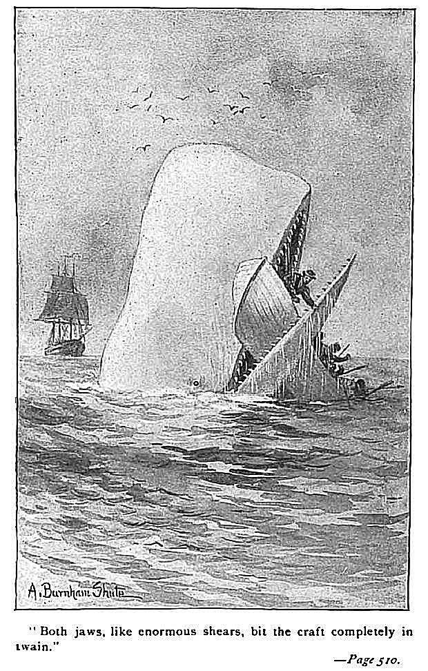 An illustration from the pages of the book