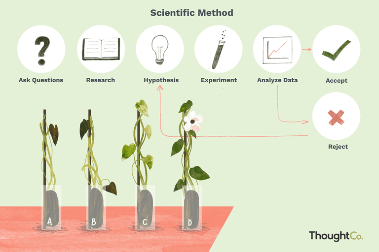 Illustration of the steps in the scientific method