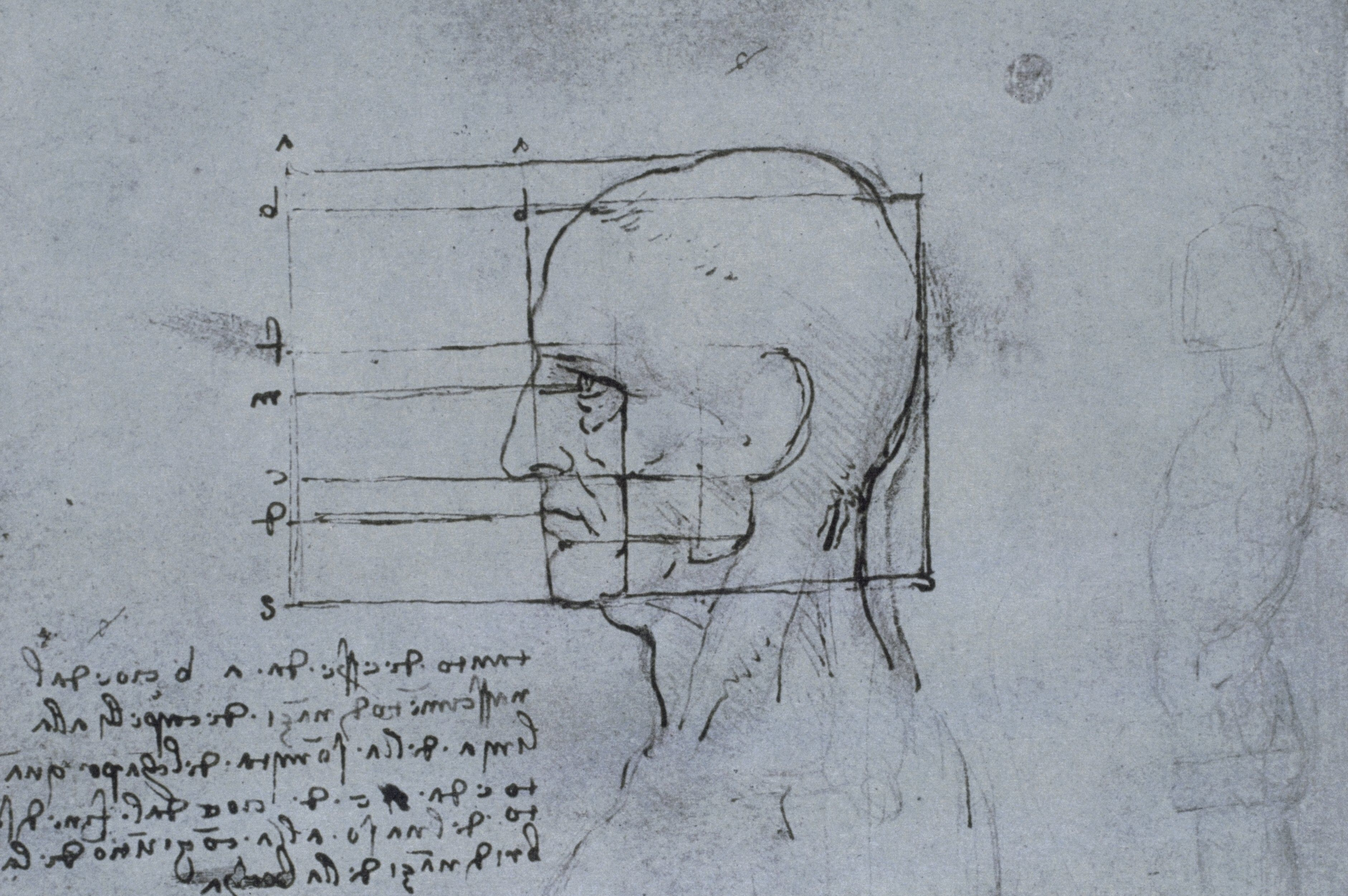 drawing of side view of a man's head with lines graphing proportions and Italian writing in notebook