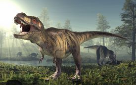 Tyrannosaurus rex dinosaur roaring