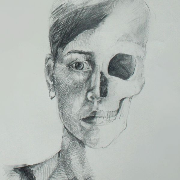 The Head And Neck Anatomy Drawing