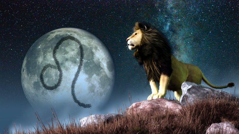 Leo The Lion Zodiac Signs