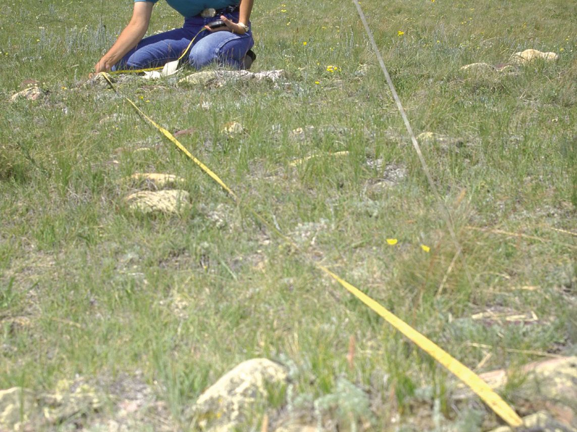 Uncovering the Archaeological Remains of Tipis
