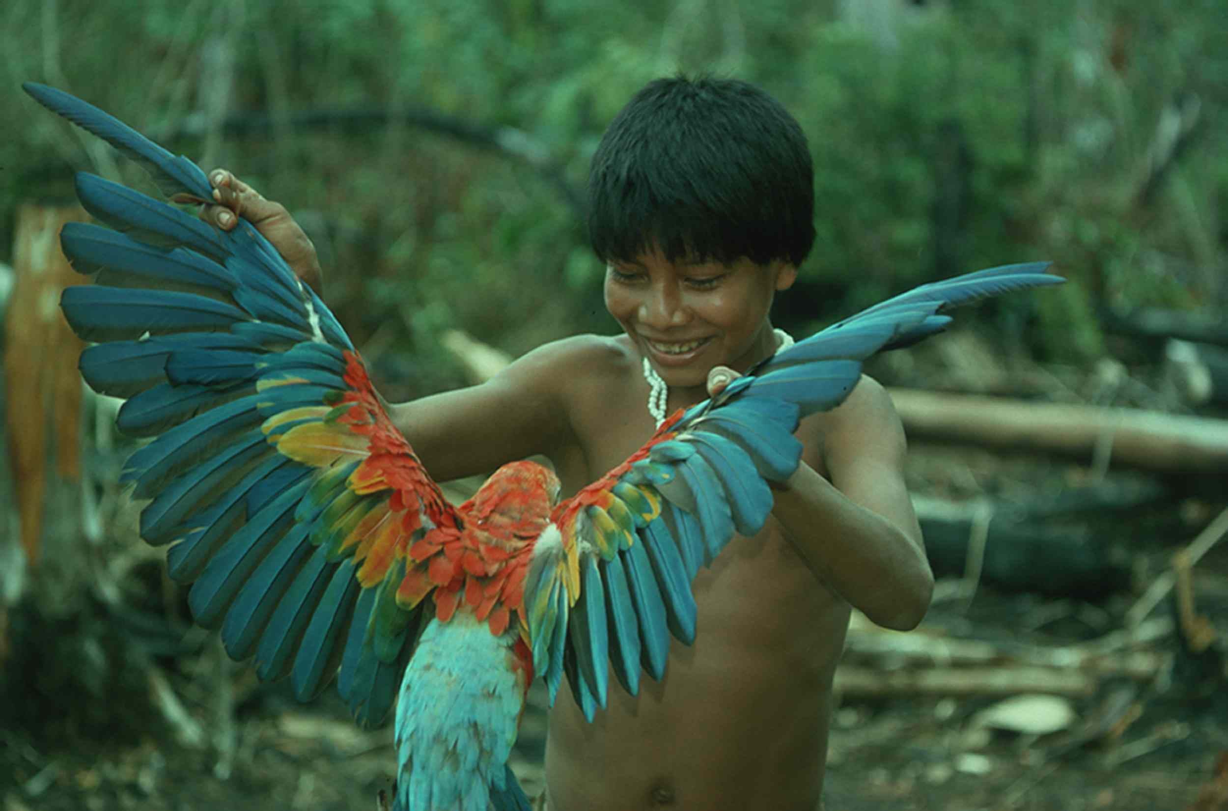 A Boy and His Macaw