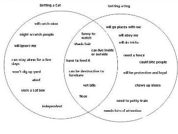 Using a Venn Diagram for a Compare and Contrast Essay