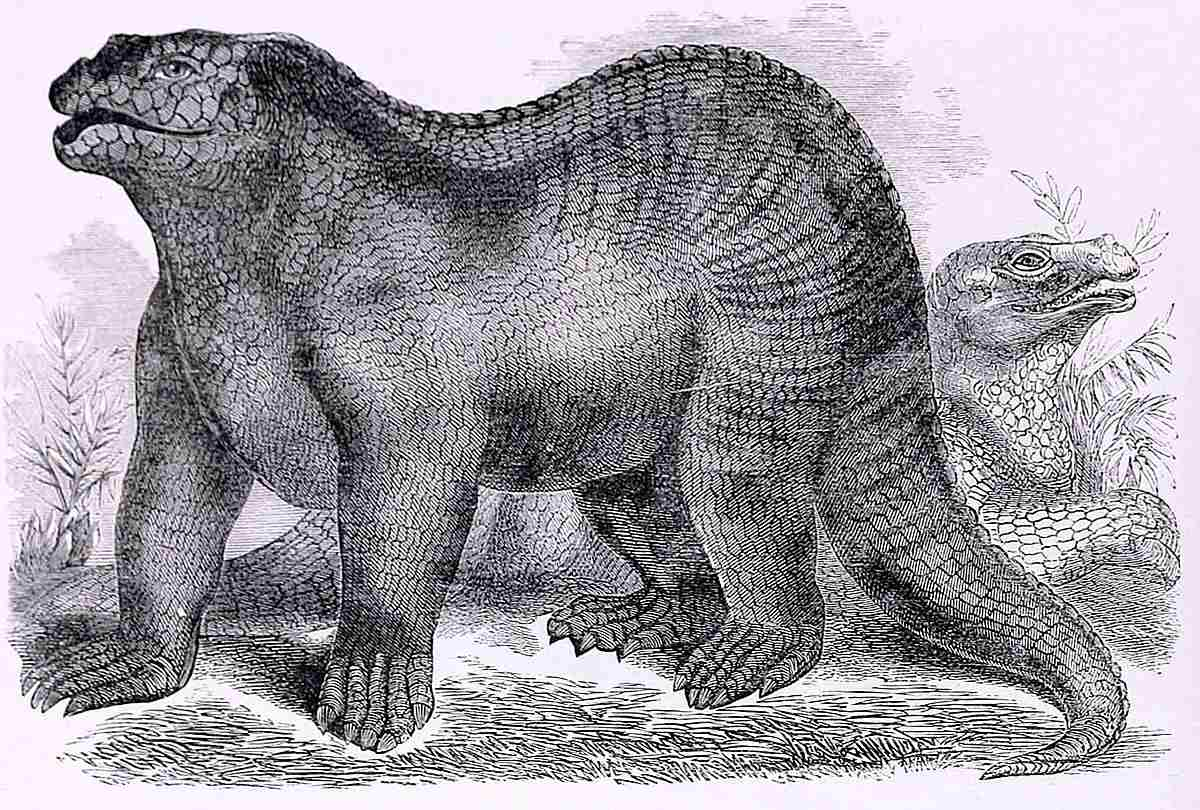 A pencil drawing of Iguanodon made in 1859.