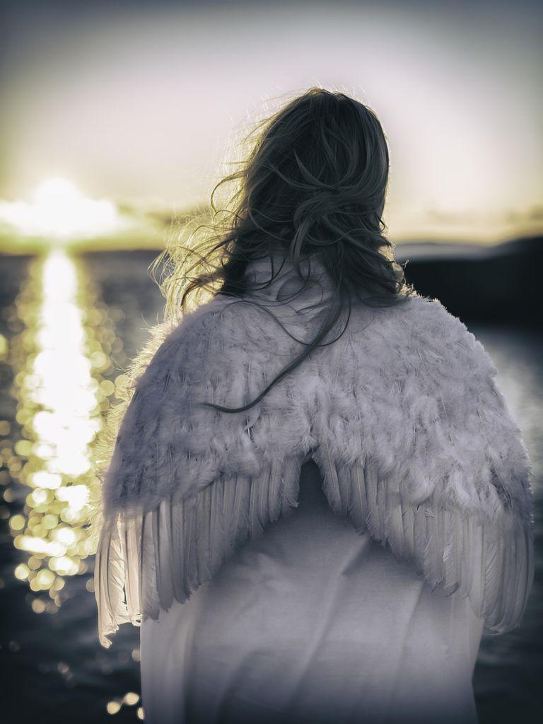 angel wings water sunlight