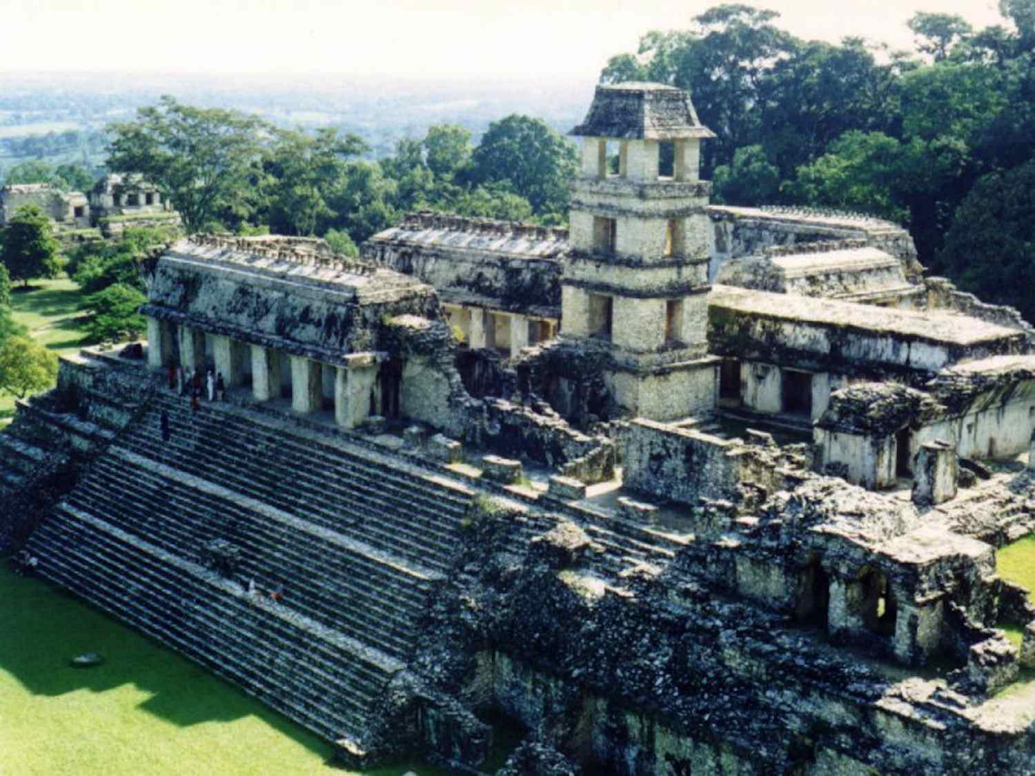 Ruins of a Mayan palace in the jungle on a sunny day.