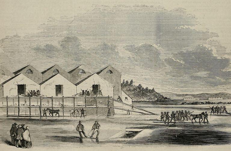 Illustration of ice harvesting in Cambridge, Massachusetts in 1855