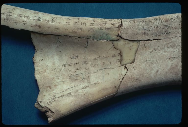Close up of Shang Dynasty Oracle Bone