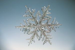 Intricate snowflake shapes form under cold temperatures.