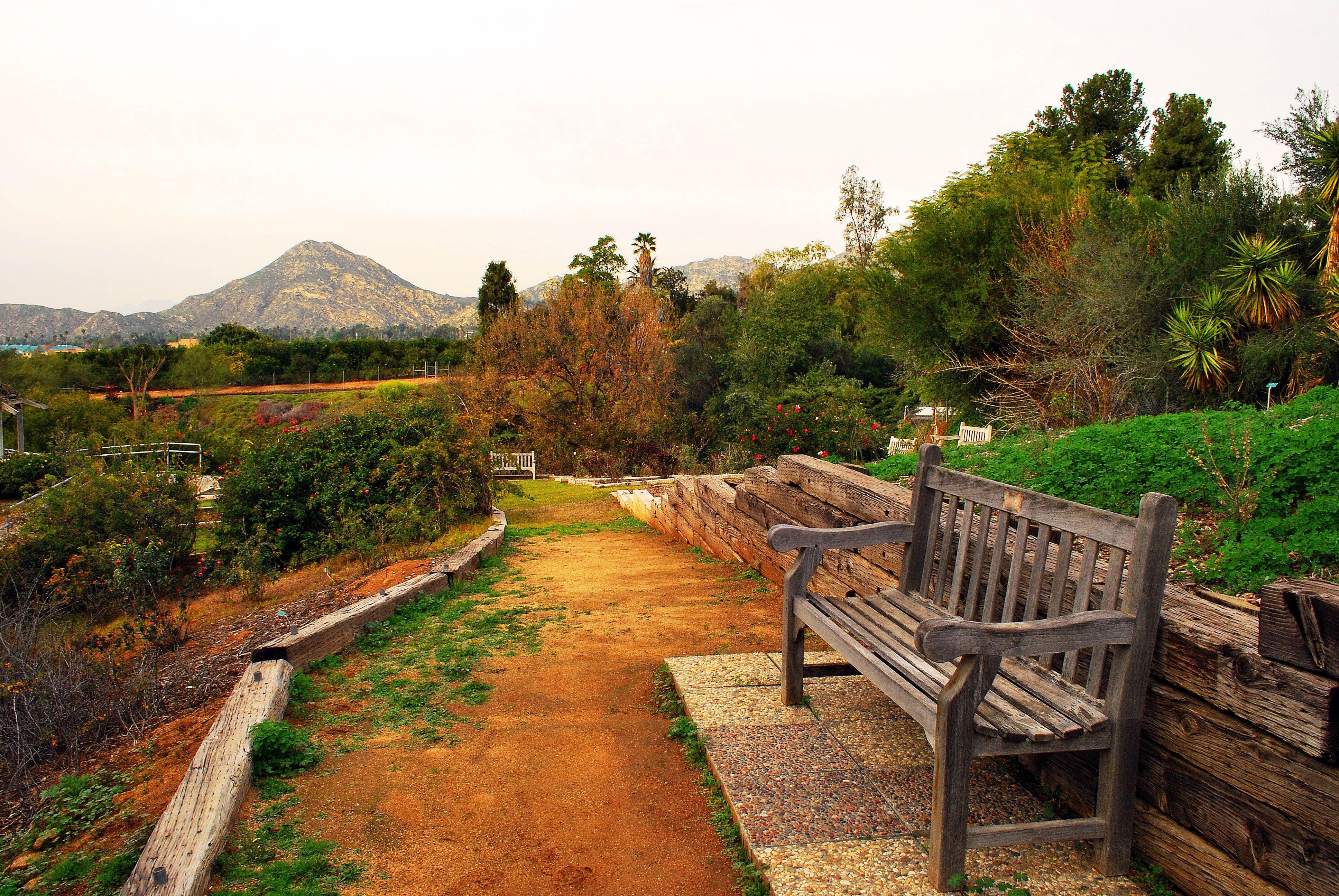 Botanic garden at UC Riverside.
