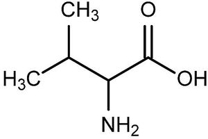 This is the chemical structure of valine.