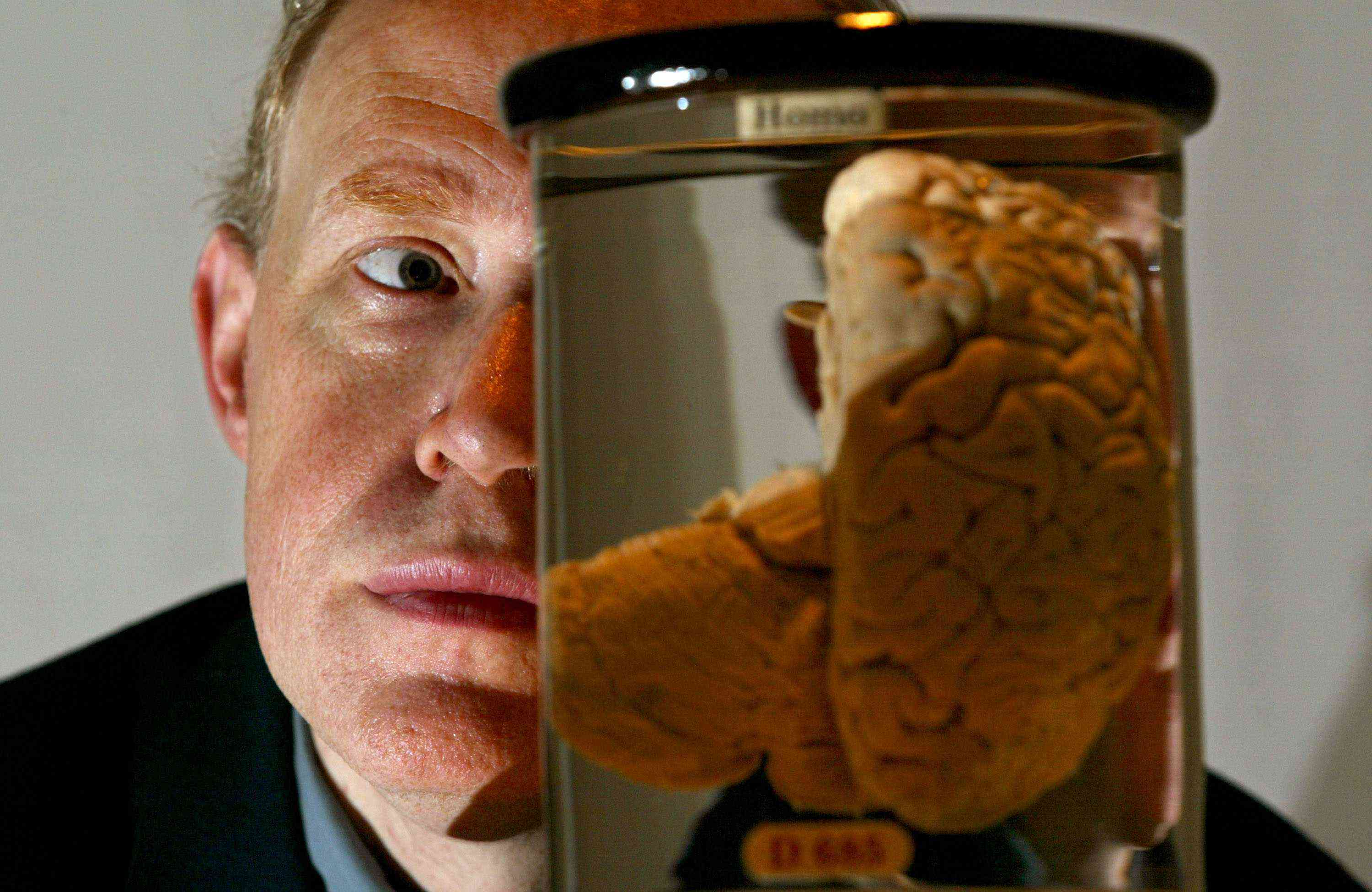 Charles Babbages Brain Launches Science Exhibition, London