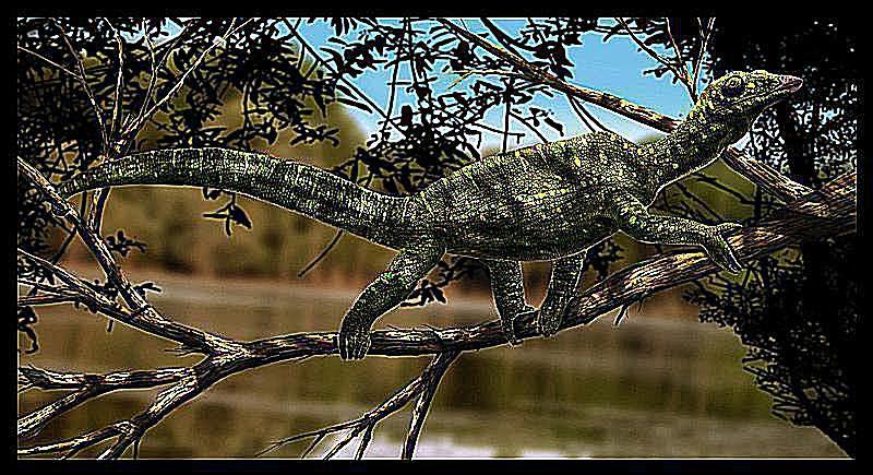 megalancosaurus