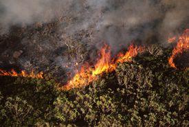 Bushfires raging in Royal National Park, aerial view, near Sydney, New South Wales, Australia