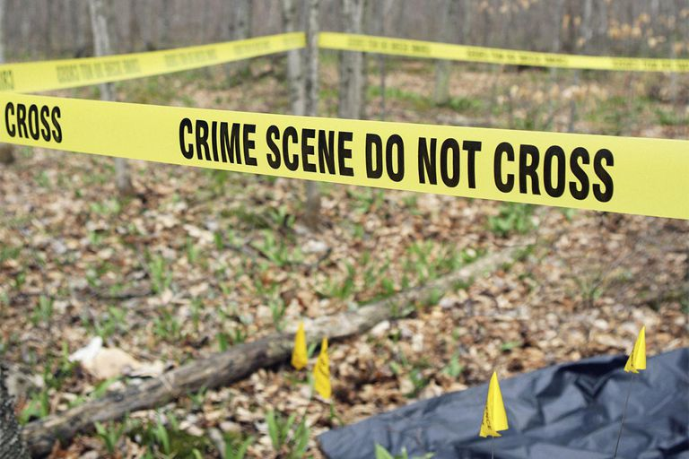 Crime scene in forest sealed off with police tape
