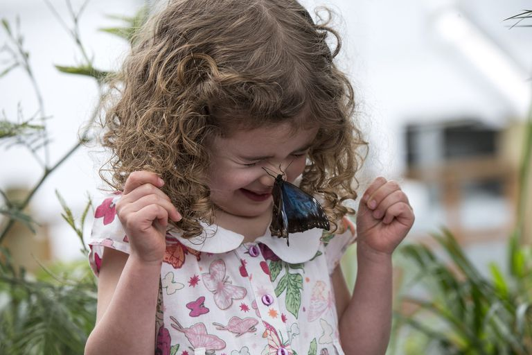 Girl with butterfly on her nose.