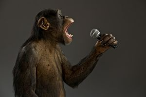 Chimpanzee sings / talks into microphone