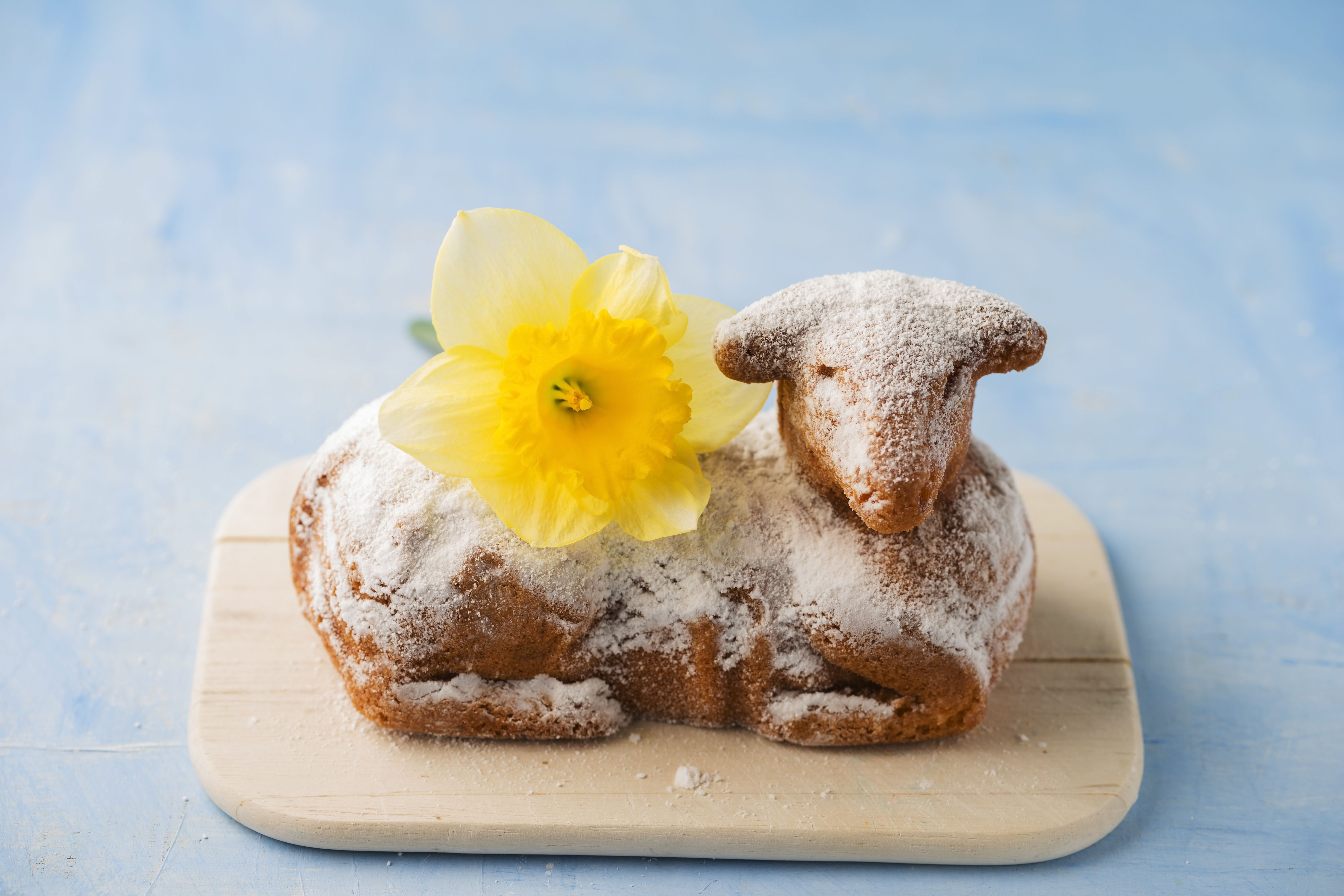 Easter lamb and daffodil on chopping board