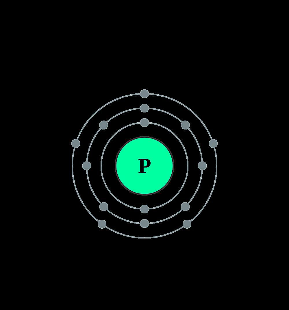 This diagram shows the electron shell configuration of a phosphorus atom.
