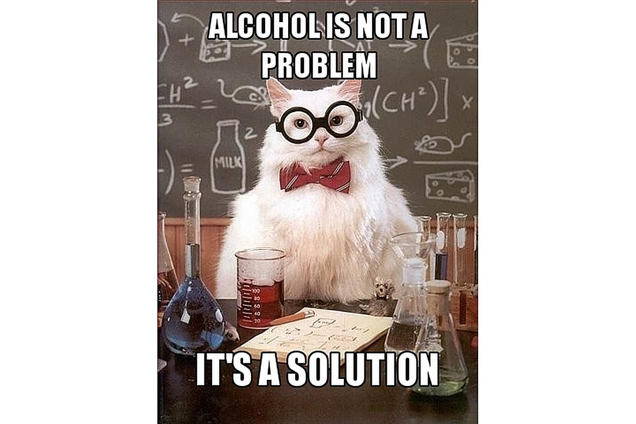 Chemistry Cat thinks alcohol is a solution.