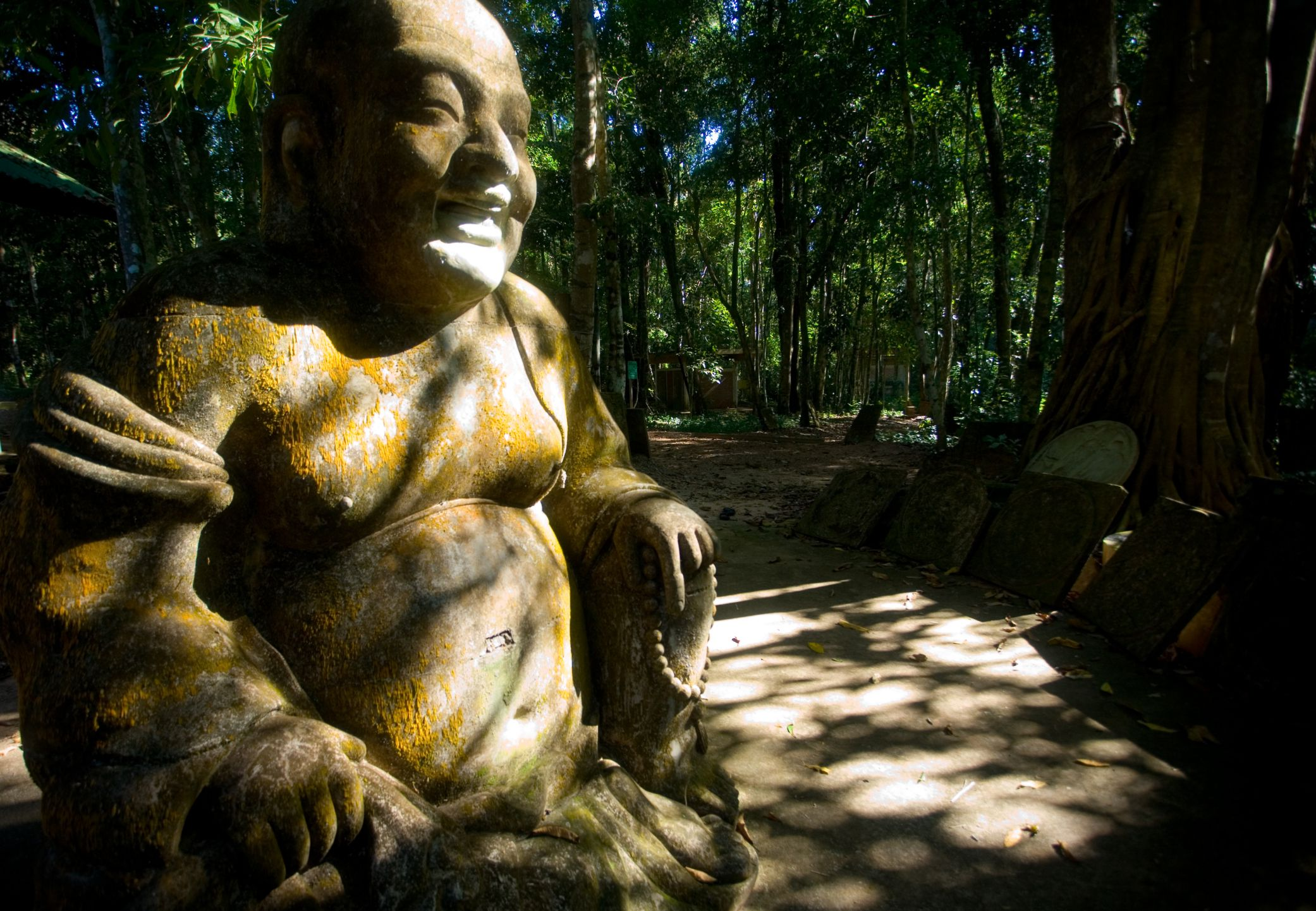 The Buddha's Path to Happiness