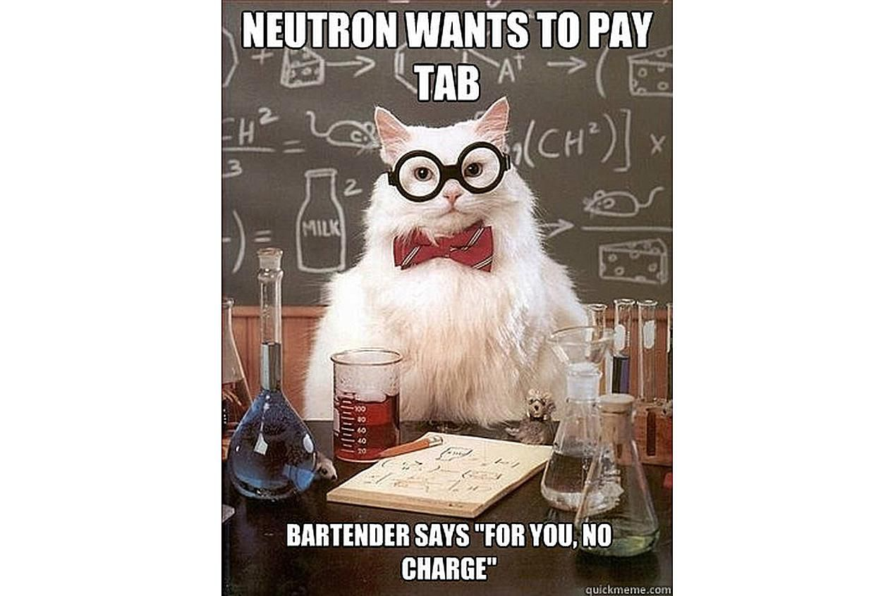 Chemistry Cat knows neutrons drink free.