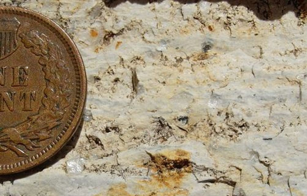 Close up of a rhyolite rock with a coin for scale.