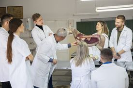 Students discuss with professor.