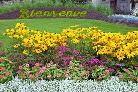 Bienvenue, Welcome, floral sign in Canada