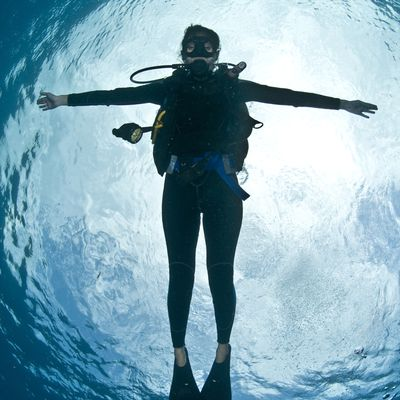 8ba02f98f35 How Does a Wetsuit Keep a Scuba Diver Warm Underwater