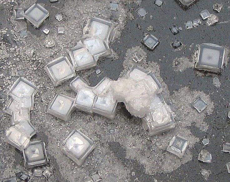 These are cubic crystals of table salt or sodium chloride.