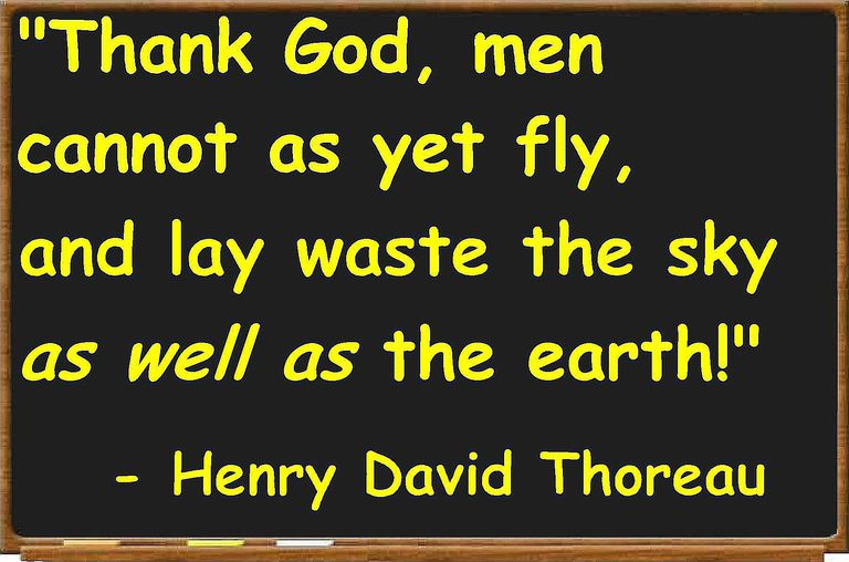 Thoreau quotation