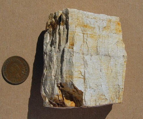 A square-ish rock made up of silica that lies between diatomite and chert